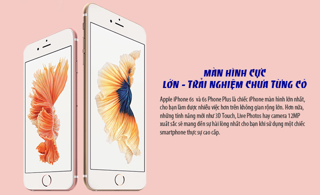 iPhone 6s 64G Rose Fullbox Chưa Active _005
