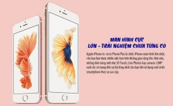 iPhone 6s 64G Rose Fullbox Chưa Active _6